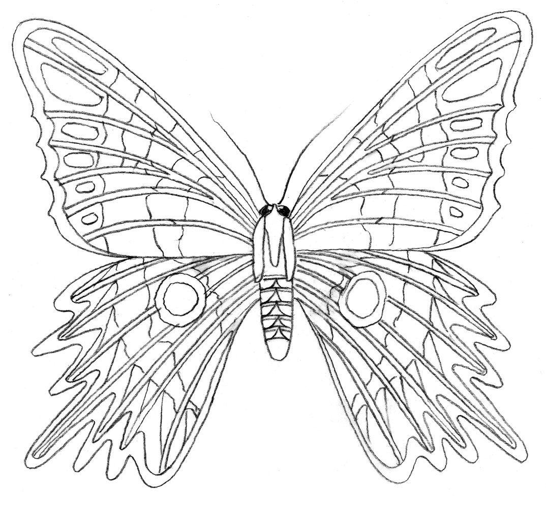 Nett Malvorlagen Zum Thema Schmetterling Online Fotos - Malvorlagen ...