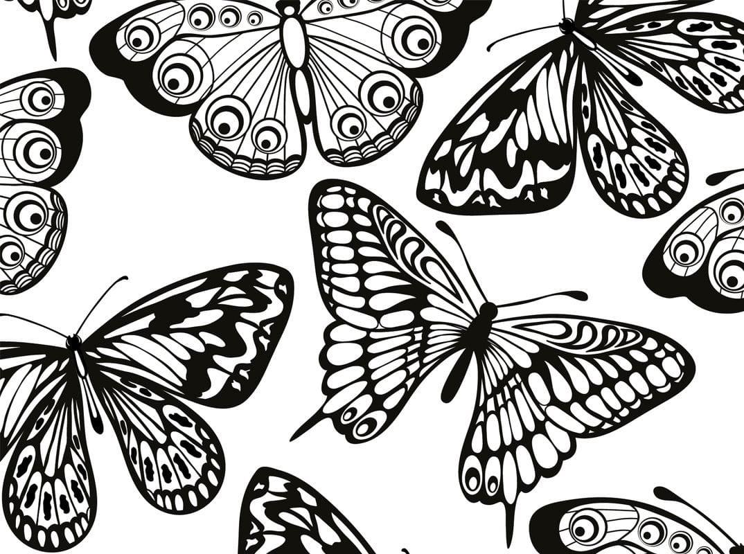 Atemberaubend Einfache Schmetterling Malvorlagen Zeitgenössisch ...
