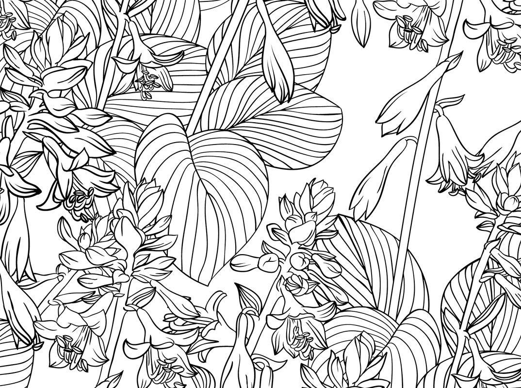Ausmalbilder Blumen Ranken : Fantastisch Malvorlagen Harte Blumen Fotos Entry Level Resume